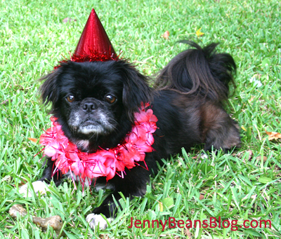 This is me, Princess Hyacinth, on my 10th birthday.